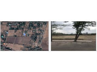 Venta Terreno 6.500 m2. Las Campiñas, Chicureo