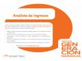 analista-de-ingresos-small-0