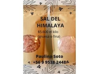 Sal Rosada